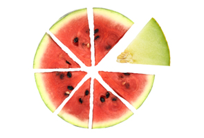 circle of melon slices
