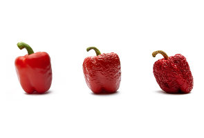 Photograph showing a red pepper on a white background going from being ripe to decaying over 3 images